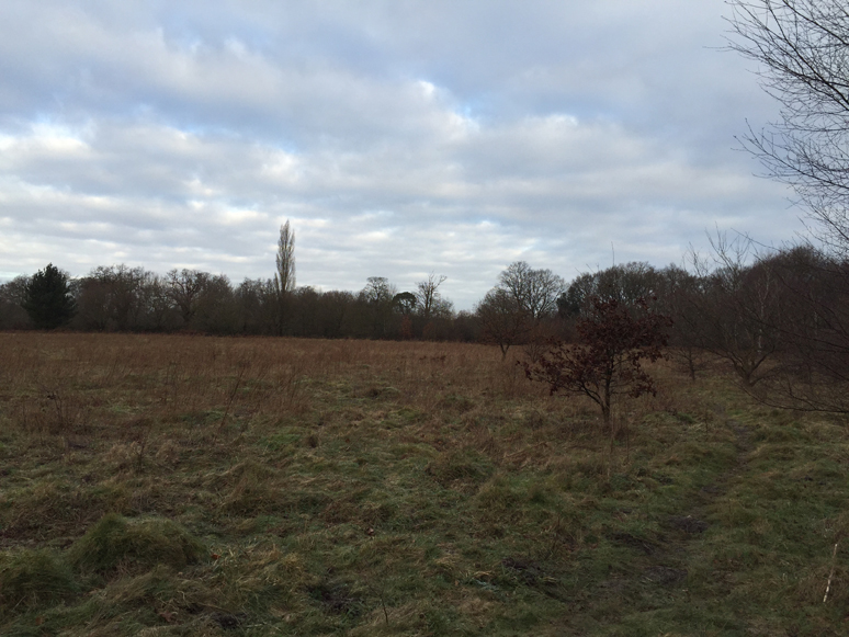 Exploring Where I Live - All Things Fitness - This and That Blog