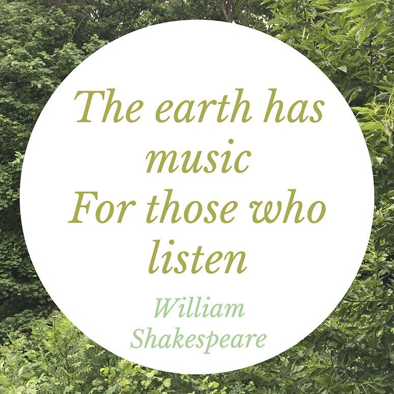 The Earth Has Music - Thought of the Day - This and That Blog